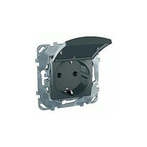 Розетка С З/К Со шторками (Винт. Зажим) С Крышкой Schneider Electric MGU5-037-12TAZD