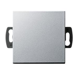 Кнопочный выключатель для малого напряжения до 42 В Gira