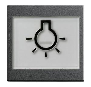 """Клавиша с полем для надписи 37*47 мм и символом """"свет"""" Gira"""