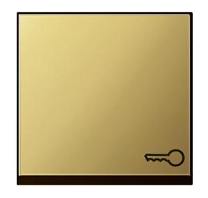 "Клавиша с символом ""ключ"" Gira"