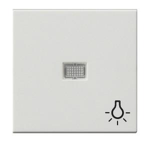 Клавиша с больш окном пикт-мой Свет белый матовый Gira